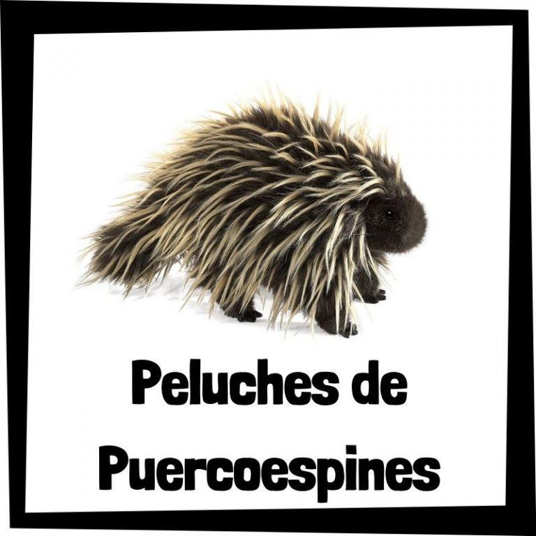 Lee más sobre el artículo Los mejores peluches de puercoespines